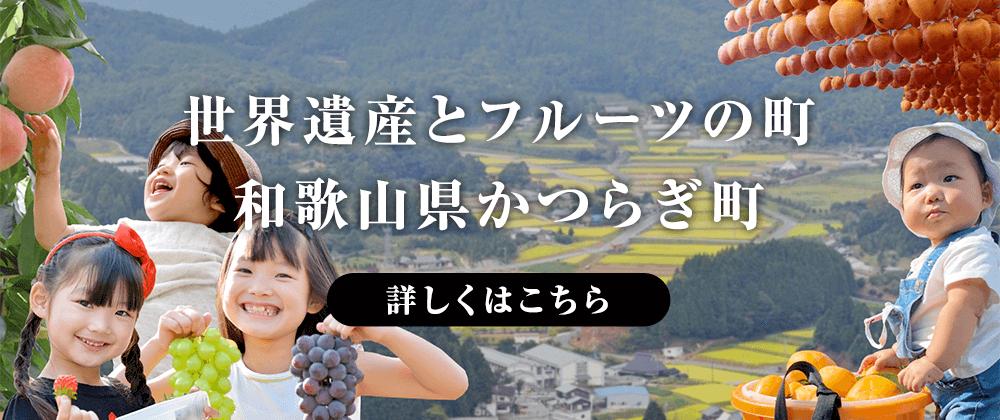 世界遺産とフルーツの町 和歌山県かつらぎ町について