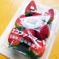 かつらぎ町の苺農家 和田農園様のまりひめが販売再開!