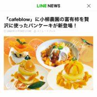 富有柿とみかんのパンケーキが様々なメディアで取り上げられました!