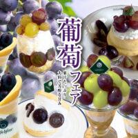 水浦農園様の葡萄を使ったパンケーキとレアチーズケーキが登場!