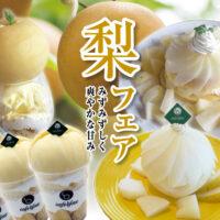 阪中農園様の高級梨を使ったパンケーキとレアチーズケーキが登場!